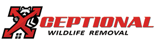 xceptional wildlife removal logo