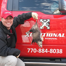 Xceptional Wildlife Removal Services
